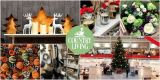 vianocny-veltrh-country-living-christmas-fairs-2018 d1084