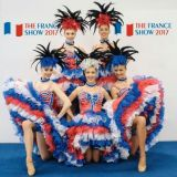 vystava-francuzska-the-france-show-4 95660