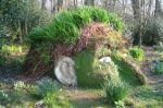 lost-gardens-of-heligan-cornwall-3
