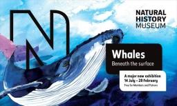 vystava-velryb-v-londyne-3.jpg